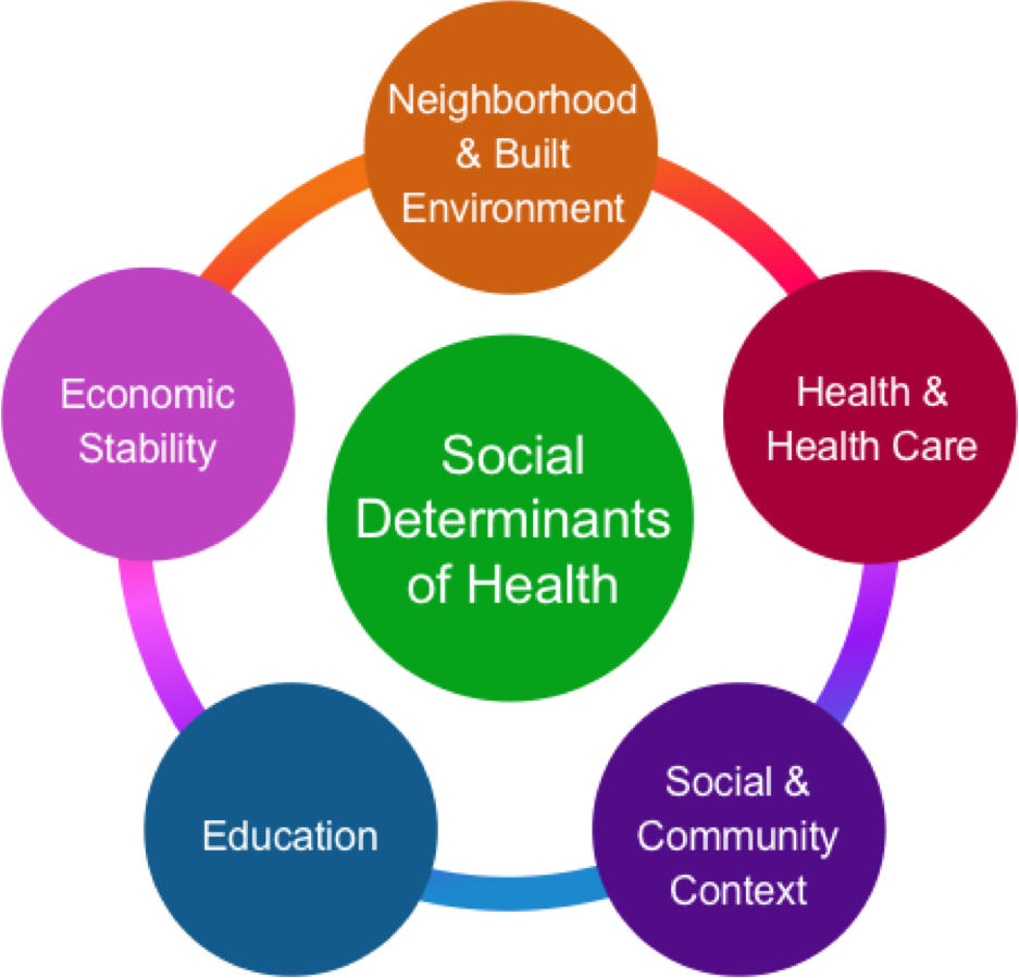 Figure 11. The Social Determinants of Health. Graphic adapted from Healthy People 2020.