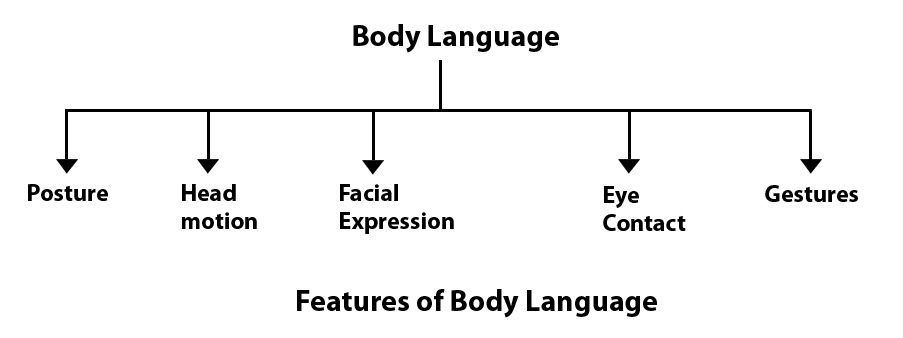 Figure 24. Features of Body Language. Graphic taken from communication theory.org.